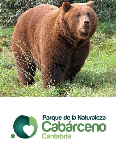 Venta de entradas de Zoológicos - Atrapalo.com