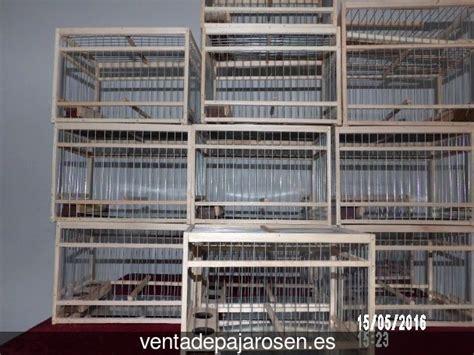 Venta de pajaros en Gascones , Madrid   Venta De Pajaros