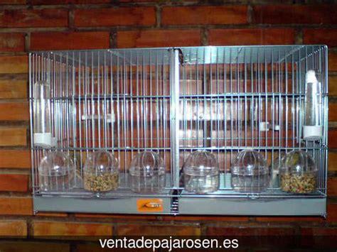 Venta de pajaros en Illa de Arousa , Pontevedra   Venta De ...