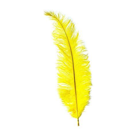 Venta de Plumas de Avestruz para Disfraces   Merceria Sarabia
