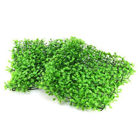 Verde Las Plantas De Acuario   Compra lotes baratos de ...