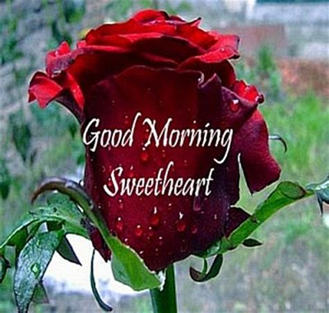 Very Romantic Good Morning Images Free Download   Image ...