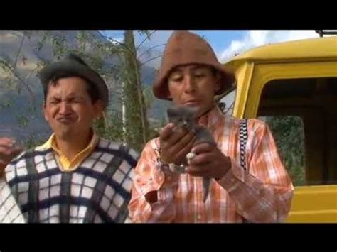 VIDEOS CHISTOSOS Y GRACIOSOS // VIDEOS DIVERTIDOS   YouTube
