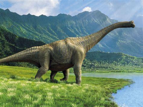 Videos De Los Dinosaurios | newhairstylesformen2014.com
