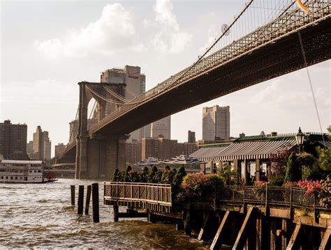 View From the River Café: 40 Years of Feasts and Firsts ...