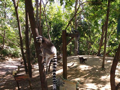 Visitar Faunia, el Parque de la Naturaleza. Horarios y Tarifas