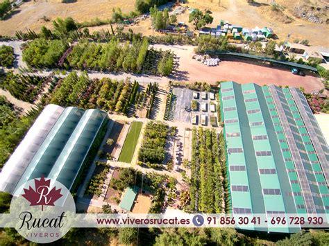 Viveros De Plantas En Madrid - Ideas De Disenos - Ciboney.net