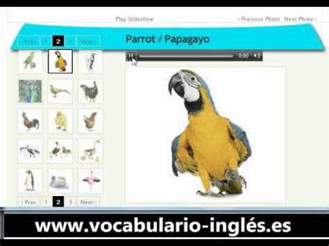 Vocabulario de Ingles los Pajaros (http://www.facile ...