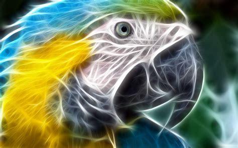Wallpapers - HD Desktop Wallpapers Free Online: Animal ...
