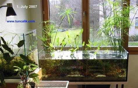 walstad+aquarium | ... low tech natural aquarium. Click on ...