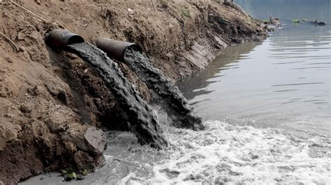 Water Pollution on emaze