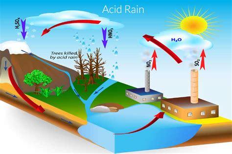 What causes acid rain