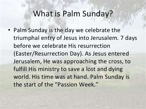 What does Palm Sunday mean?; Why is it important?, The ...