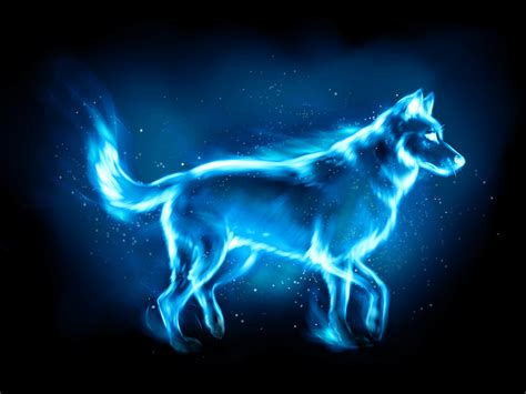 What does your Patronus mean — Patronus Analysis 010 The ...