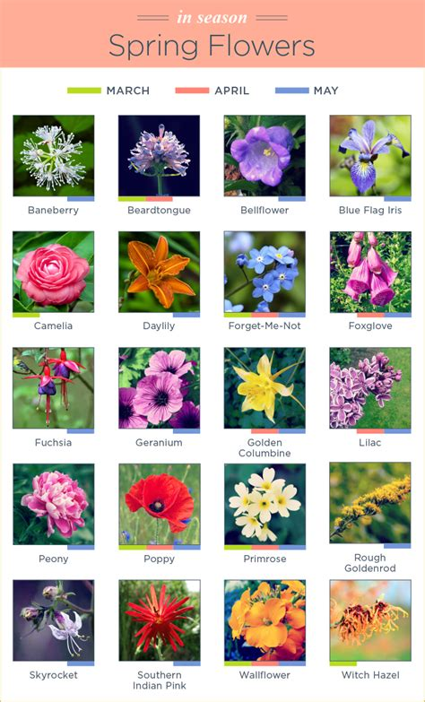 What Flowers Are In Season?   FTD.com