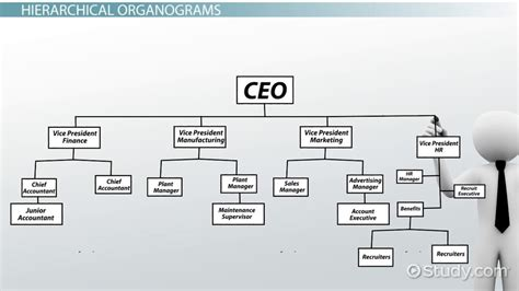 What is an Organogram? - Definition, Structure & Example ...