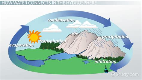 What is the Hydrosphere? - Definition & Examples - Video ...