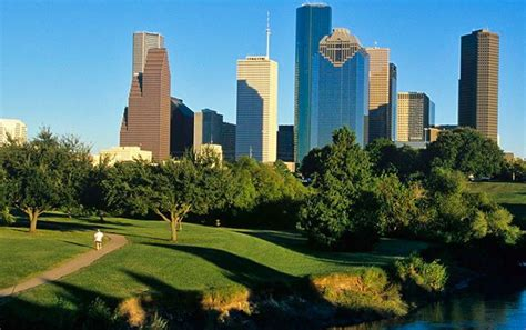 Where can I buy yerba mate in Houston?