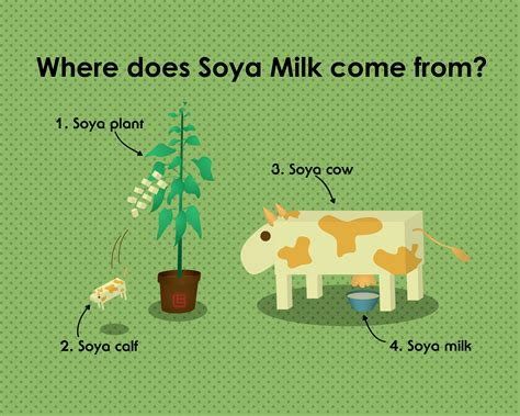Where does Soya Milk come from by elsalee on DeviantArt