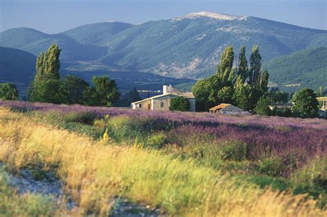Why You Need to Visit Provence, France - Images of ...