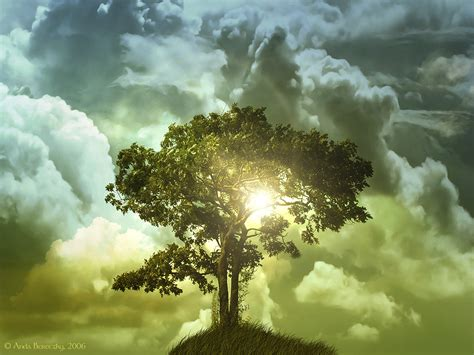 Windows Vista WallpaperFree The Tree of Life Wallpaper