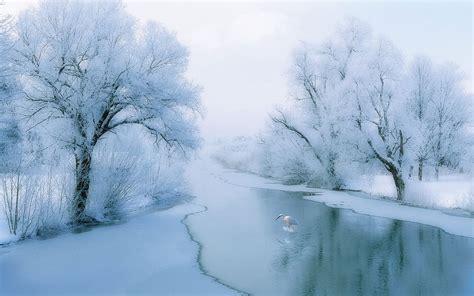 Winter beautiful rime scenery wallpaper 7 - Landscape ...