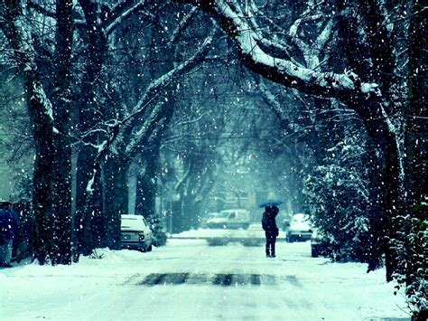 Winter Frost Snow Road Trees Couple Girl Guy Kiss Mood ...