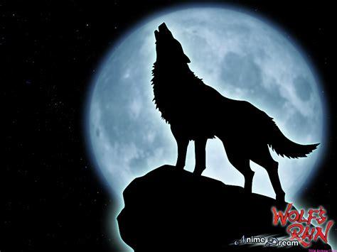 Wolf s Rain