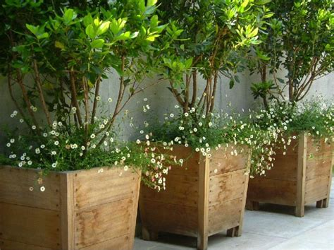 Wooden large container pots. See similar ones outside the ...