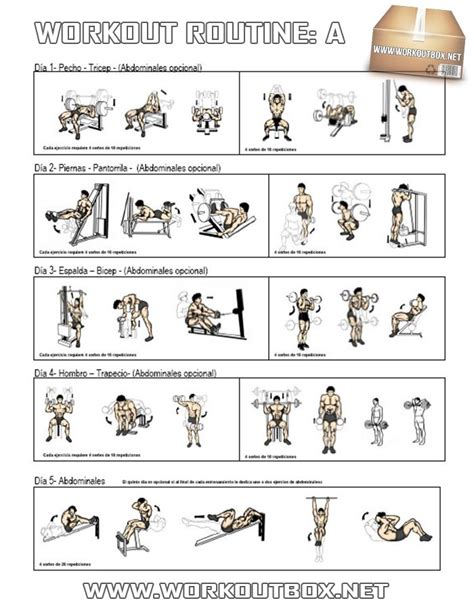 Workout Routine A   Healthy Fitness Full Body Training ...