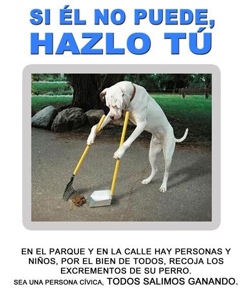 www.todoperro.es • Ver Tema   AYUDA CARTEL
