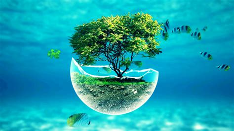 x underwater tree widescreen hd abstract desktop wallpaper ...