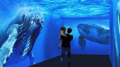 Xanadú acogerá en otoño un acuario con 10.500 animales