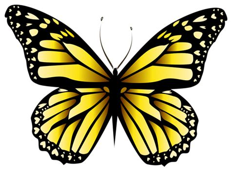 Yellow Butterfly PNG Clipar Image | Proyectos que intentar ...