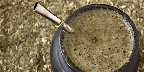 Yerba mate, propiedades de esta bebida saludable   El Cuerpo