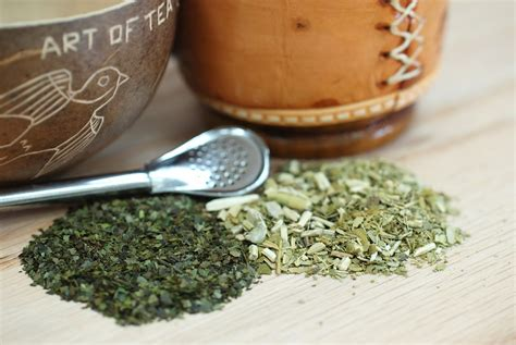 Yerba Mate Tea: What You Need To Know   ArtOfTea