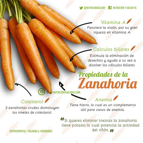Zanahoria 12 razones para consumirla ⋆ Nutrición y Salud Y G