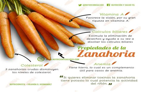 Zanahoria: no solo para conejos | 5 de Septiembre