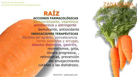 Zanahoria. Propiedades y beneficios - YouTube