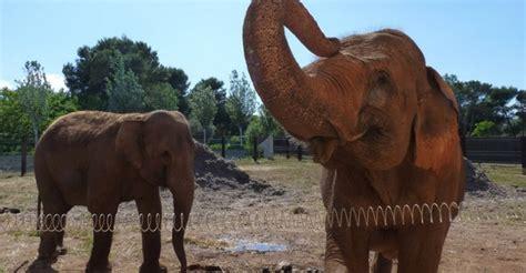 zoo | Ahorradoras.com