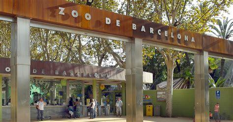 Zoo de Barcelona   Meet Barcelona