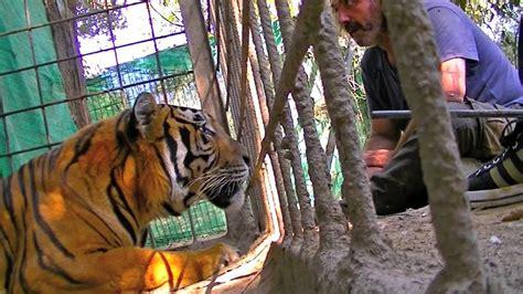 Zoo de Castellar   YouTube