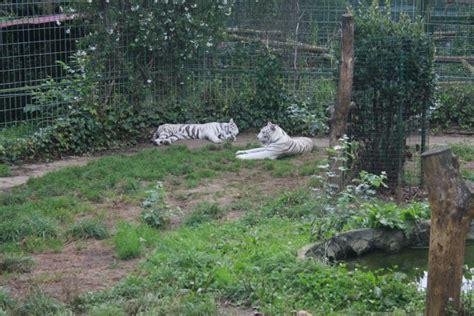 Zoo de Santillana del Mar