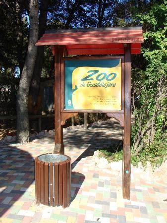 Zoo Guadalajara   qué saber antes de ir actualizado 2017 ...