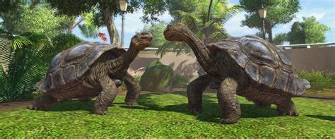 Zoo Tycoon: Ultimate Animal Collection - Unleash your wild ...