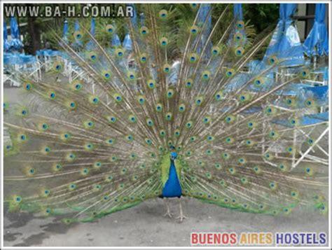 Zoológico de Buenos Aires, Palermo, Argentina | Buenos ...