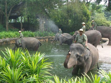 Zoológico de Singapur   Wikipedia, la enciclopedia libre