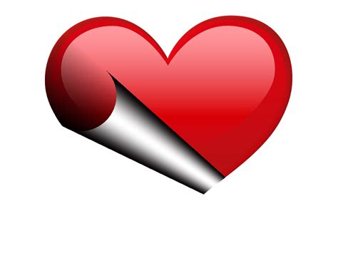ZOOM DISEÑO Y FOTOGRAFIA: corazones,hearts,distintos en png