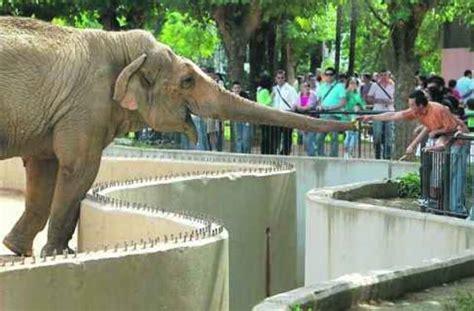 Zoos del Mundo - Zoológico de Córdoba, (España). - Otros ...